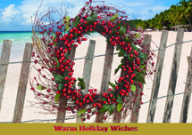 Beach Wishes Holiday Cards